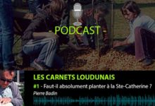 Podcast Les Carnets Loudunais - Sainte-Catherine