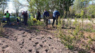Travaux de plantations à la pépinière d'ARBRISSEL